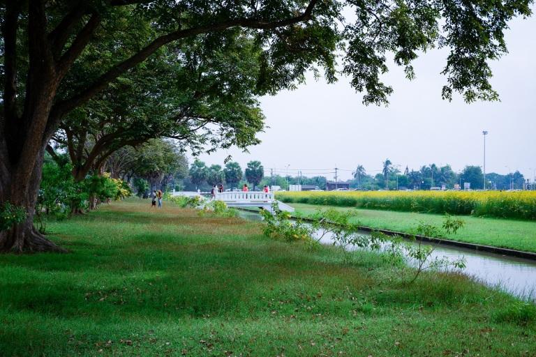 เที่ยว ถ่ายรูป ปอเทือง พุทธมณฑล นครปฐม