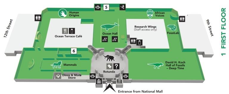 แผนที่ พิพิธภัณฑ์ ธรรมชาติวิทยาแห่งชาติ สมิธโซเนียน Smithsonian National Museum of Natural History virtual